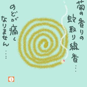 菊の香りの蚊取り線香