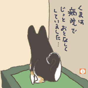 犬のしつけ