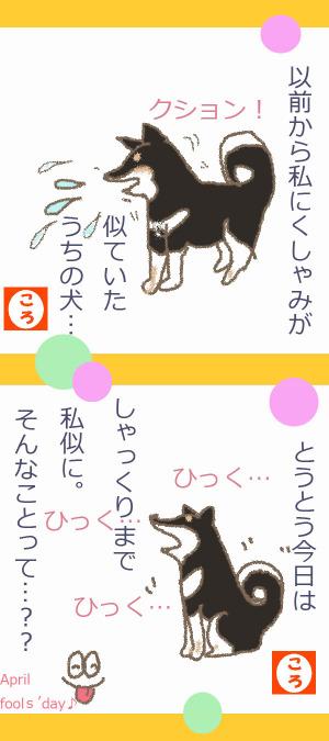 犬が真似する